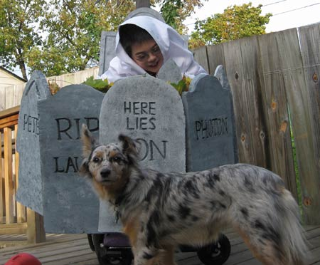 Jon in his wheelchair ghost costume and Photon the dog